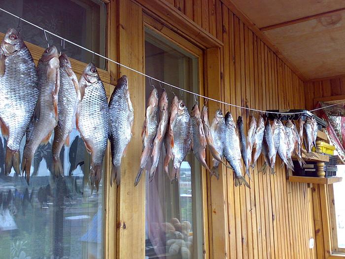 Солим и вялим рыбу (Мастер-класс с фото)